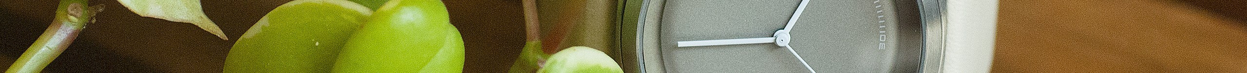 Collection Passe-Temps | Montres TACS Officiel